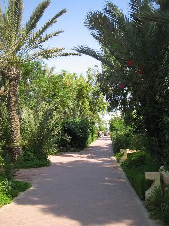 Winzrik Resort & Thalasso Djerba: Allées de l'hotel