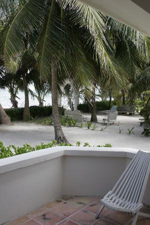 Belize Tradewinds Paradise Villas: The grounds