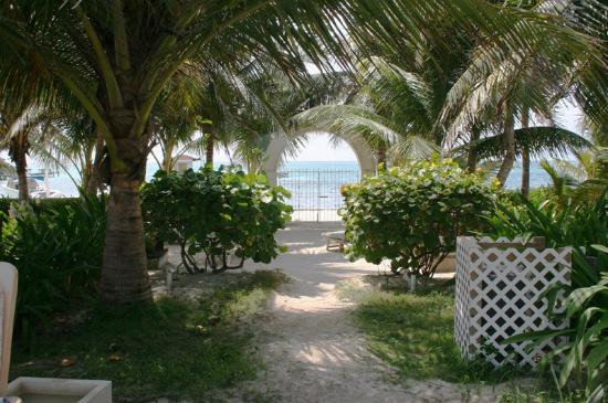 Belize Tradewinds Paradise Villas: Ocean view from the grounds