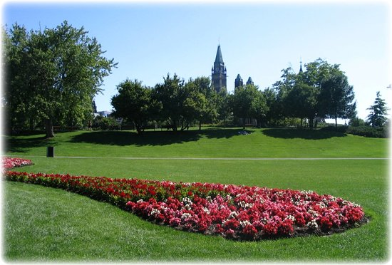 Parliament Hill and Buildings: Parliament Hill with flowers in the park