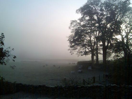 Dalebottom Farm Caravan & Camping Park: A misty April morning at Dalebottom