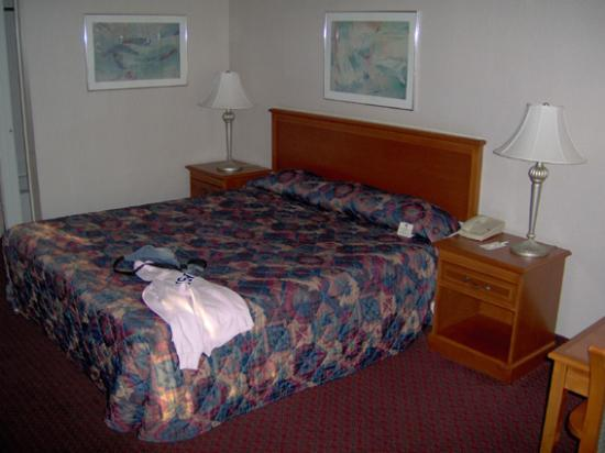 Best Western Norwalk Inn: Chambre avec lit King size