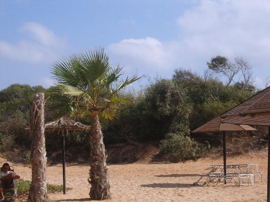 Dome Beach Hotel & Resort: beach