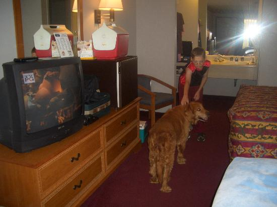 Ramada Batesville: Child and dog roomy