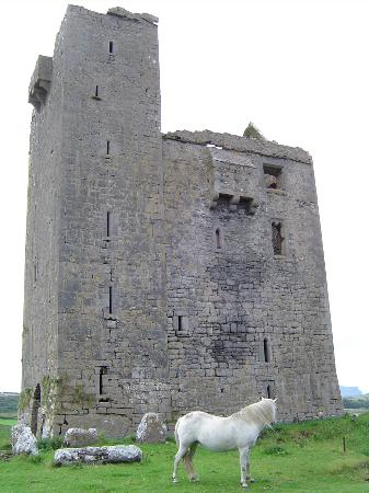 Ballinalacken Castle Country House : Castle ruins on site