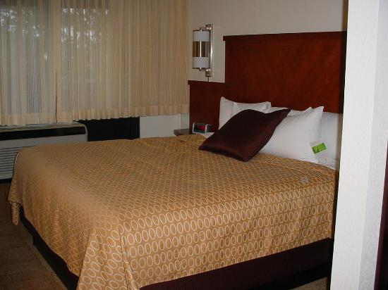 Hyatt Place Columbus Dublin : Big Comfy Bed!! Soft Sheets