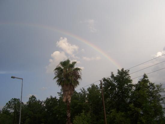 Clarion Suites Maingate: a rainbow in beautiful Kissimmee, FL!
