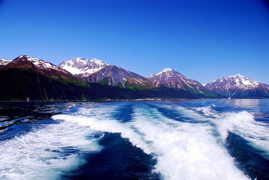 Boat cruise in Seward Alaska