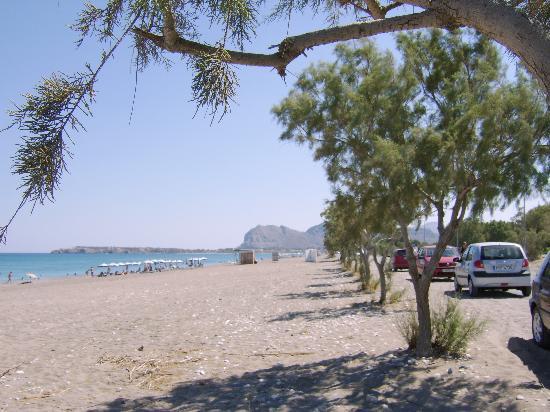 Sylvia Hotel: Afandou Beach