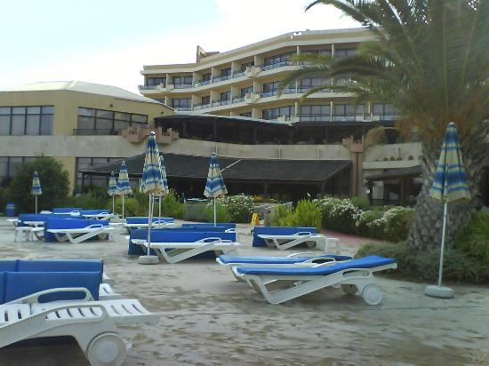 Venus Beach Hotel : the swimming pool