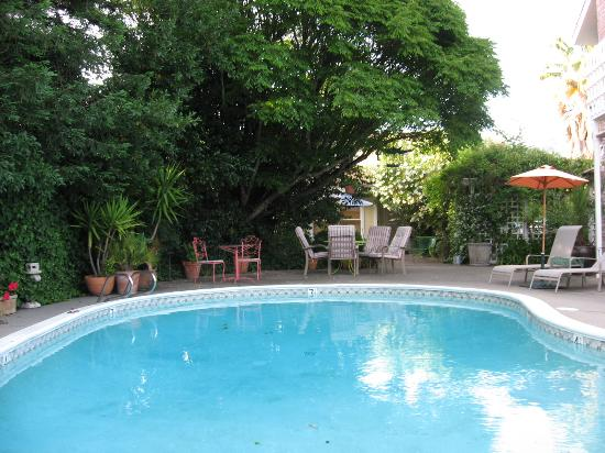 Chelsea Garden Inn: Relaxing pool area