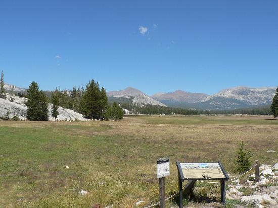 Tuolumne Meadows: Tuolumne Meadow