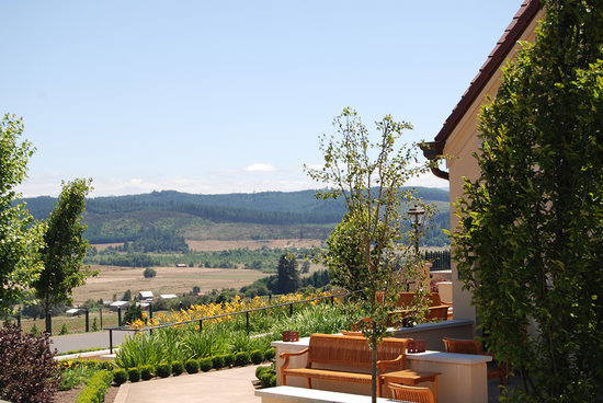 King Estate Winery: The terrace at King Estate