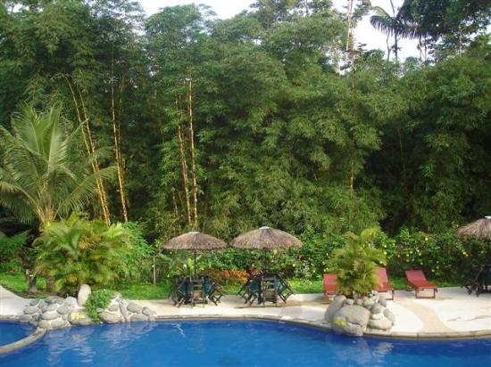 Arasha Tropical Rainforest Resort & Spa: pool at Arasha