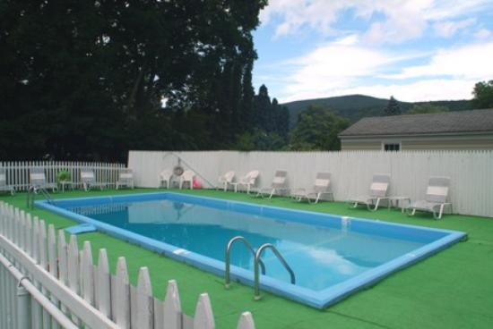 Willows Motel: Clean and beautiful pool