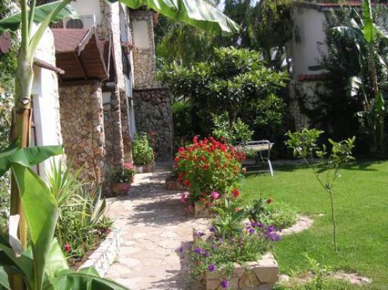 Hotel Villa Monte: Courtyard & Garden
