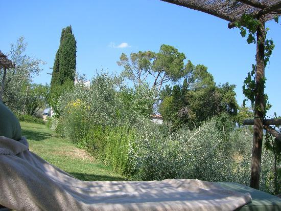 Villa Bordoni: Shaded sun beds in the gardens