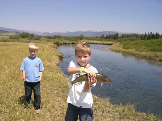 Fishing on the madison river picture of bar n ranch for North river fish bar