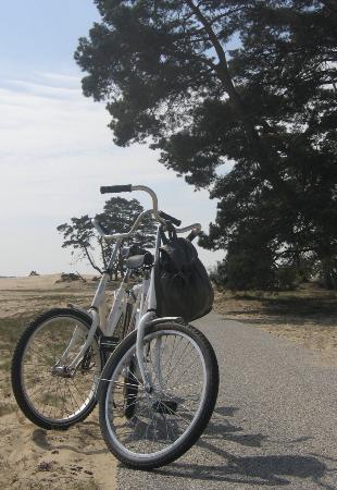 Hoenderloo, Belanda: Free bikes