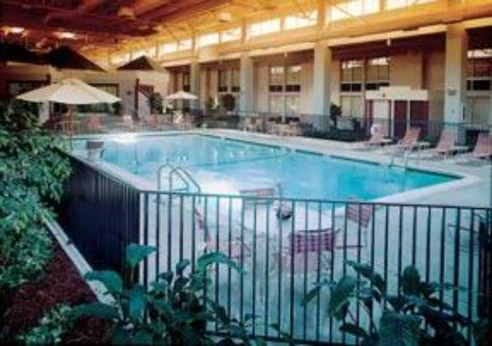 Comfort Inn & Suites Syracuse Airport: Pool With Giant Hair.