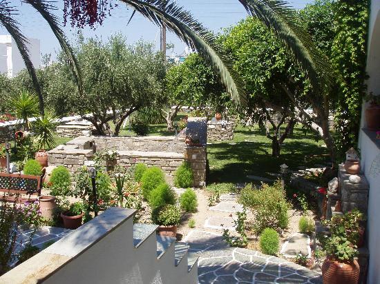 بنسيون صوفيا: view of the front garden