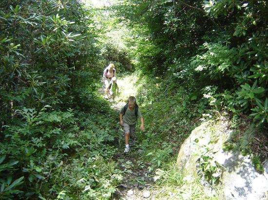 LeConte Lodge: Taking the Rainbow Falls trail to the lodge is 6.6 miles long..made for a long day