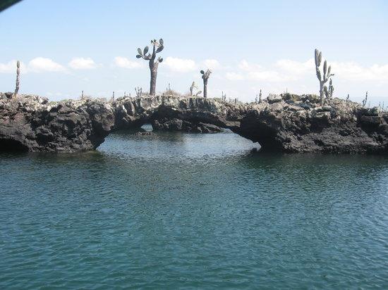 إيزابيلا, الإكوادور: Cabo Rosa Los Tuneles