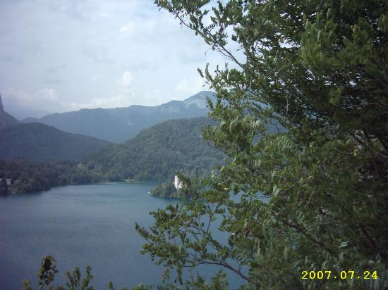 Alp Penzion: Lake Bled from the castel