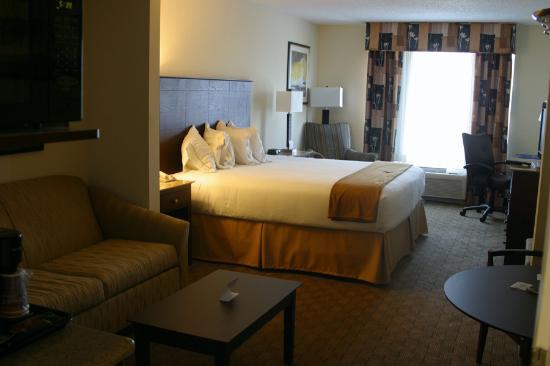 Holiday Inn Express Columbus at Northlake: Standard King  Sofabed