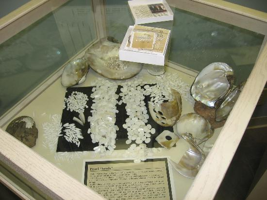 Tennessee River Freshwater Pearl Farm and Museum: Pearl display case in museum.