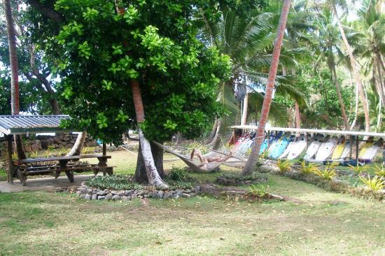 Safari Island Lodge : Garden