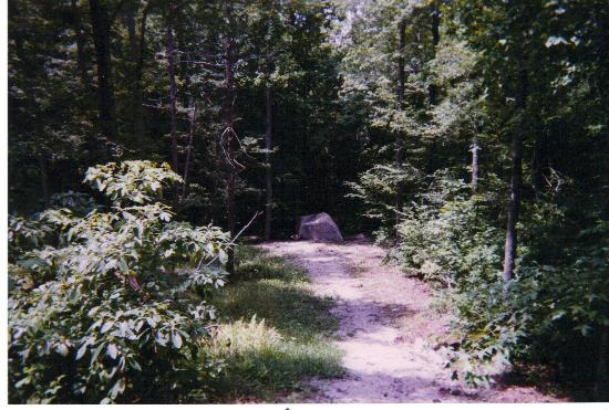 Patsy Cline Memorial: Looking down - this is VERY steep, not obvious in photo.