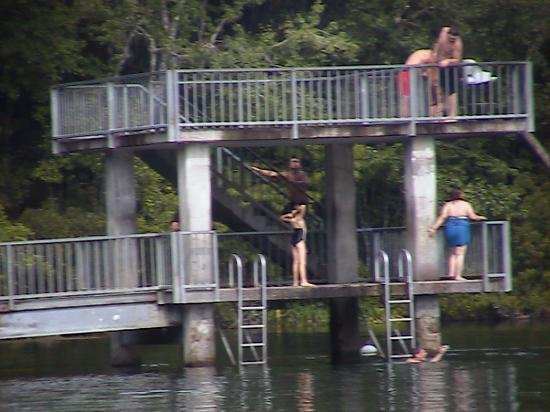 Wakulla Springs, Flórida: Diving Tower