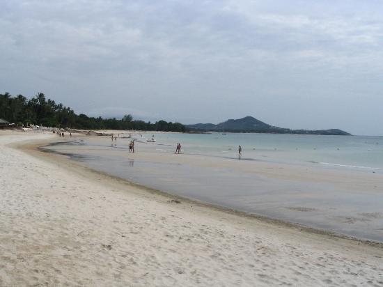 มาร์โค โปโล รีสอร์ท แอนด์ เรสเตอรองต์: chaweng noi beach near the hotel