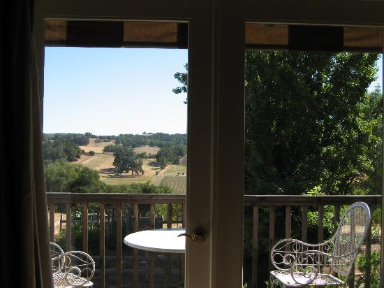 Orchard Hill Farm Bed & Breakfast: View from Countryside Room