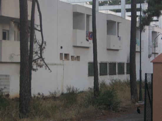 Photo of Las Chapas Palacio del Sol Marbella