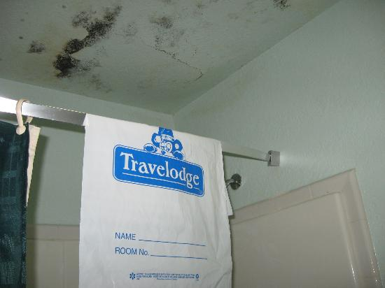 Travelodge San Antonio Lackland: Our proof that it was the Travelodge and the leaky ceiling.
