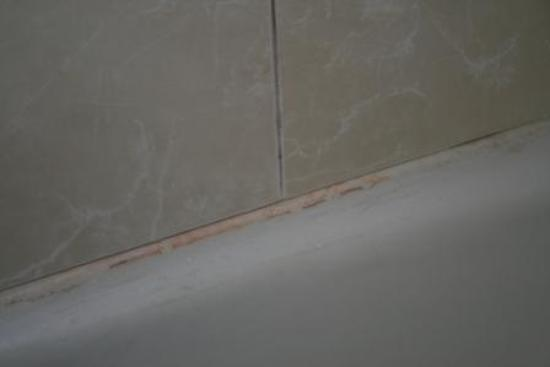 Holiday Inn Roanoke Valley View: Mold/Mildew in Tub