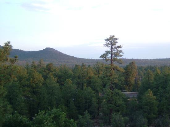 BEST WESTERN PLUS Inn of Williams: view from the room