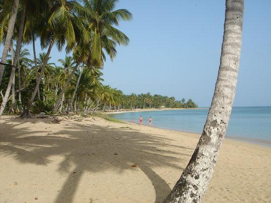 Halbinsel Samaná, Dominikanische Republik: playa hotel bahia principe el portillo