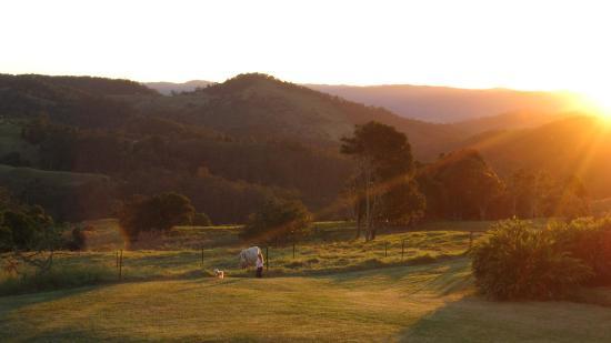 Sunset - Maleny Hideaway