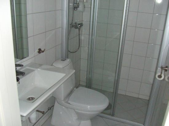 Park Hotel: Shower.