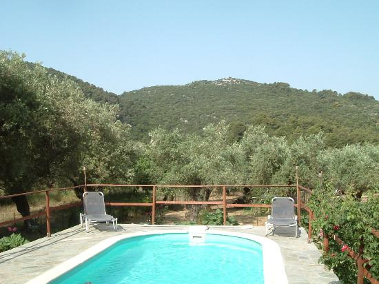 Agravlis Villa: The swimming pool and view of forested mountains.