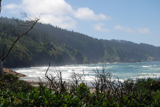Tillamook, Oregón: Beautiful Ocean at Cape Lookout State Park