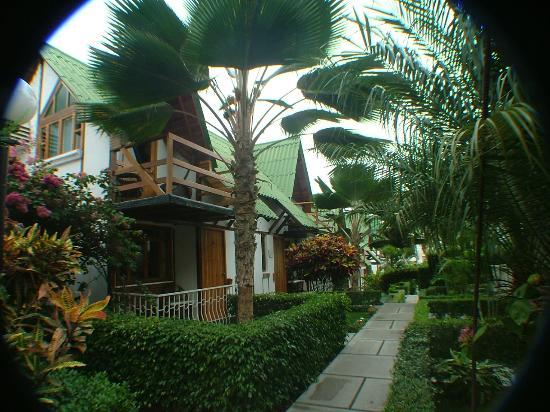 Balandra Hotel: esta foto la tome miren la belleza y esta en pleno centro de Manta