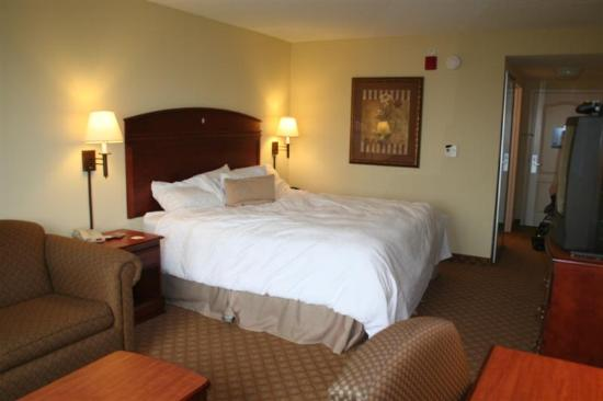 Hampton Inn & Suites Schertz: 1 KING BED STUDY