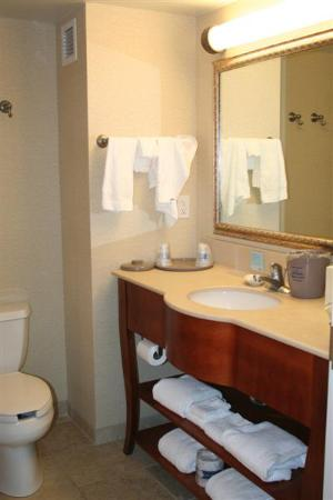 Hampton Inn & Suites Schertz : 1 KING BED STUDY
