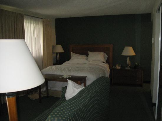 Residence Inn Boise Downtown: bedroom/living room