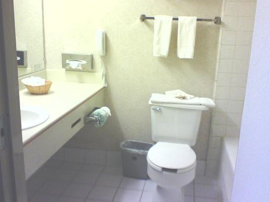 Best Western Los Angeles Worldport Hotel: Bathroom
