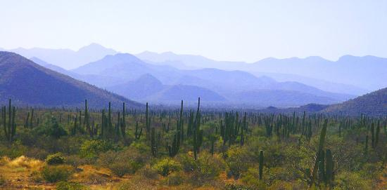 Todos Santos, Meksiko: Hike Anyone